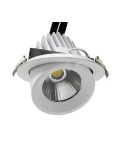 50W runder einstellbarer LED-Spot 24º